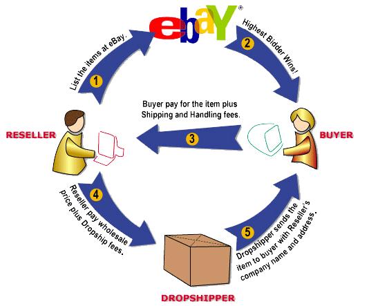 ds domination ebay drop ship